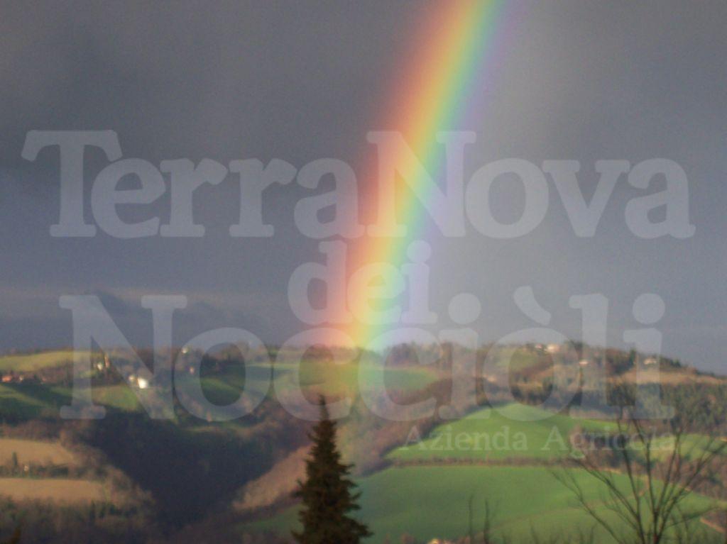 -TerraNova-dei-Nocciòli