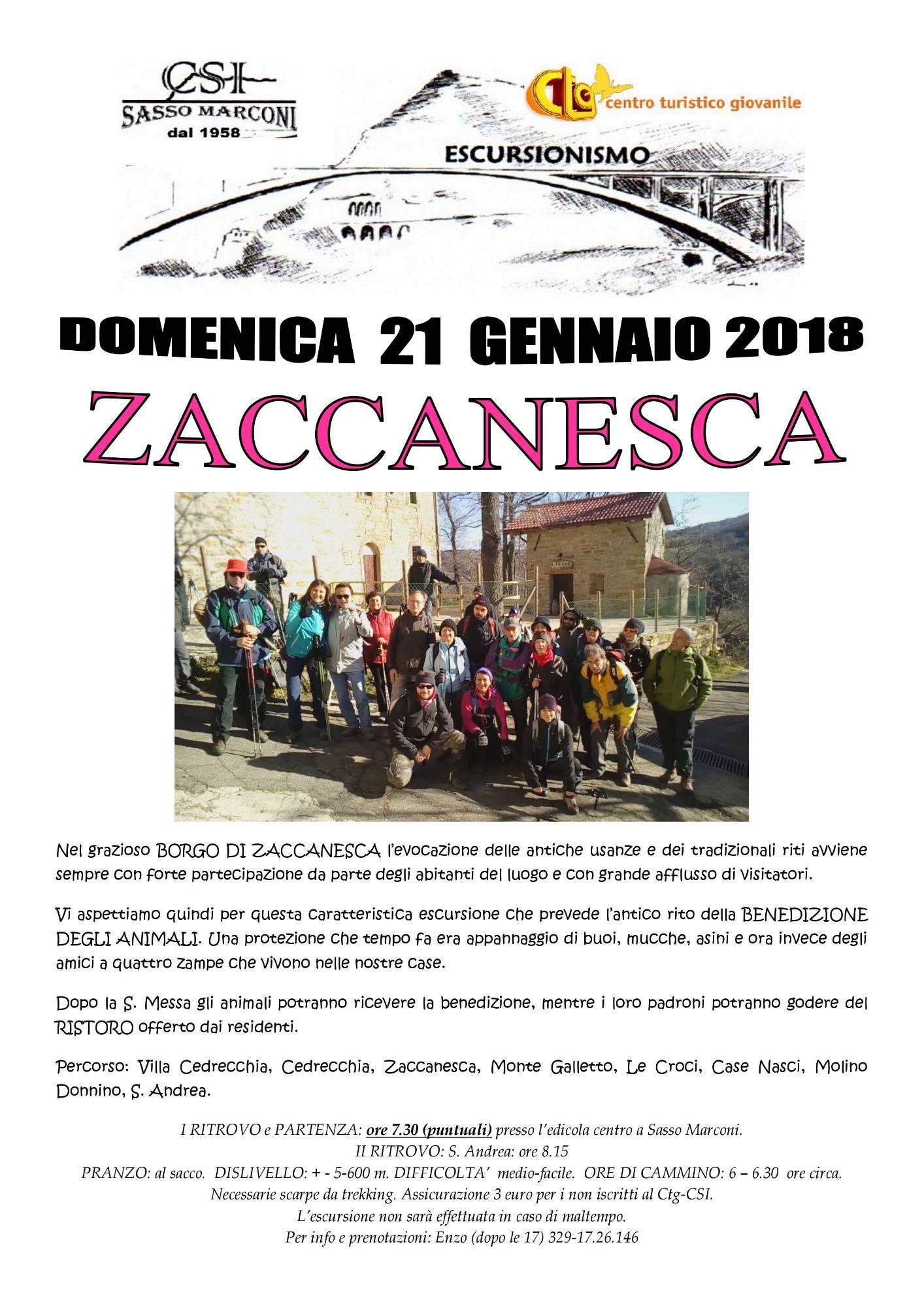 Zaccanesca
