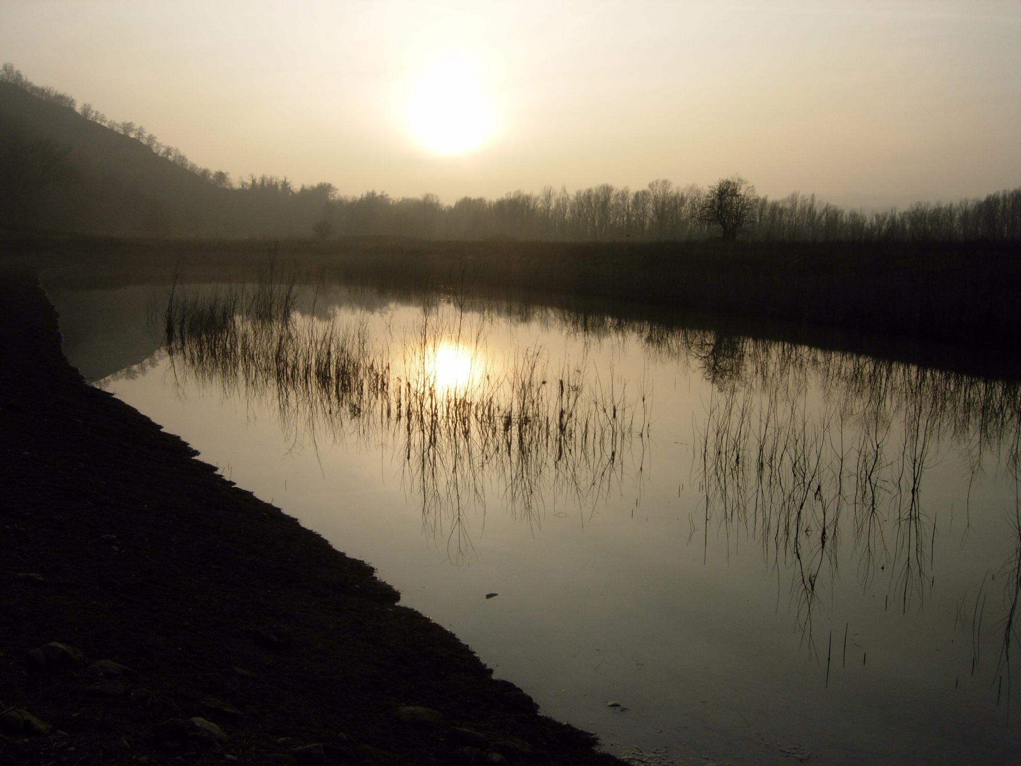 Visita guidata all'Oasi naturalistica di San Gherardo e Concerto al tramonto