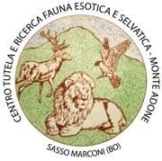 Buon anniversario Centro Monte Adone